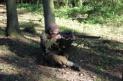 Britský armádní odstřelovač 1944