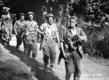 Gótská linie 1944